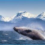 Alaska8_Web72DPI_2.jpg?itok=2T1bWB1V