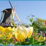 dutchwindmill_14920059_fotoliarf_2221_960x380.jpg