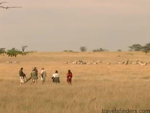 explore the nature of il moran camp in kenya360p 06