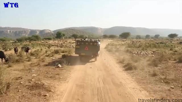 india trip 2016 day 1 hd 1080p 26