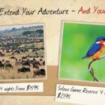 kenya, tanzania vacation hd 11