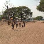lions of zimbabwe hd 1080p 06