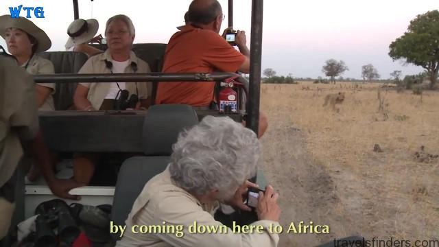 lions of zimbabwe hd 1080p 25