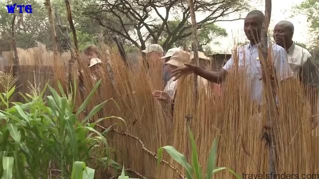 namibia safari, namibia beaches hd 1080p 71
