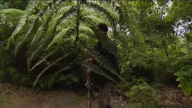 new zealand tourism vacations hd 13