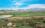 sheila oconnell, ireland tour guide 18