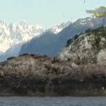 tour in alaska coastal wilderness, travel guide360p 31