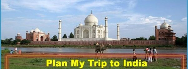 Trip to India _2.jpg