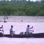visit the kilombero river in tanzania360p 17