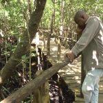 zanzibar island tourism, tanzania hd 1080p 15