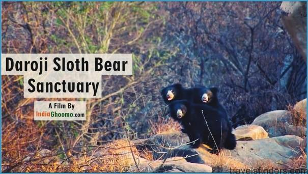 Hampi - Daroji Sloth Bear Sanctuary_4.jpg