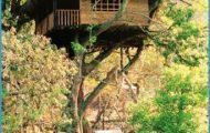 Hornbill River Resort in Dandeli - Karnataka India Travel_0.jpg