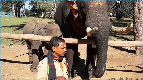 K.Gudi Wilderness Camp - Jungle Lodges, and Resorts B R Tiger Reserve India Ghoomo_5.jpg