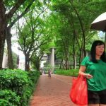 magical singapore 40