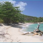 Travel Advice And Advisories For Roatan_14.jpg