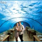 Maldives May be Your Dream Country for Honeymoon_3.jpg