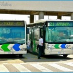 Tenerife South Airport To Your Hotel Taxi Bus Shuttle Or Rental Car_4.jpg