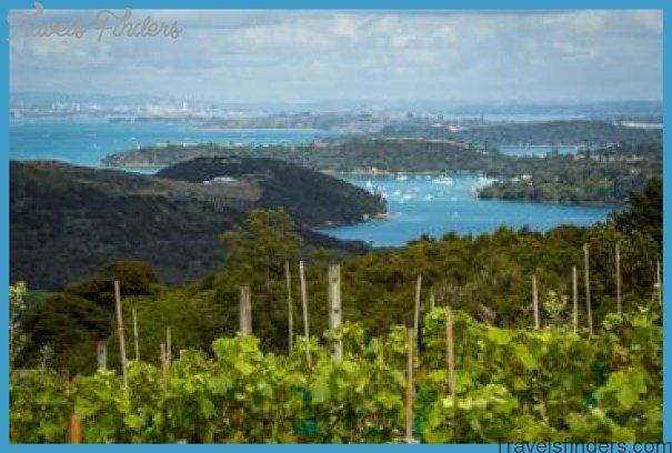 The Best of Waiheke Ziplining Wine Tasting and Vineyard Lunch_1.jpg