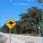 ROAD TRIP HACKS AUSTRALIA_0.jpg