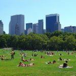 10 top places to visit in new york state central park
