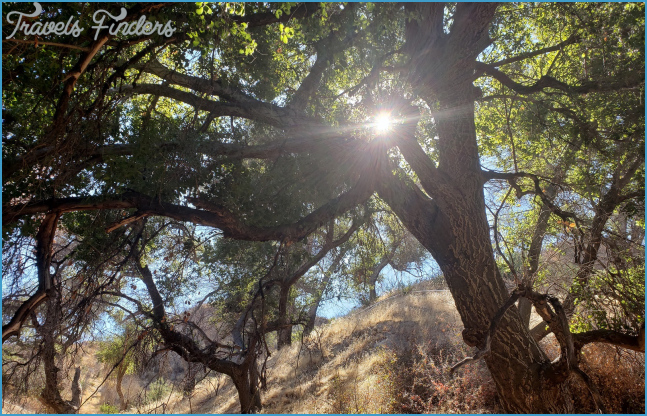 Rivendale/Canyon View Loop (Santa Clarita) – Nobody Hikes in LA