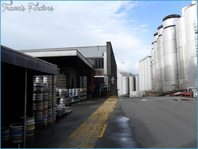 I might have a glass of beer: A visit to Tennent's