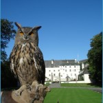 Corporate events at Traquair