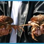 Indulge in Astoria's Crab, Seafood &amp