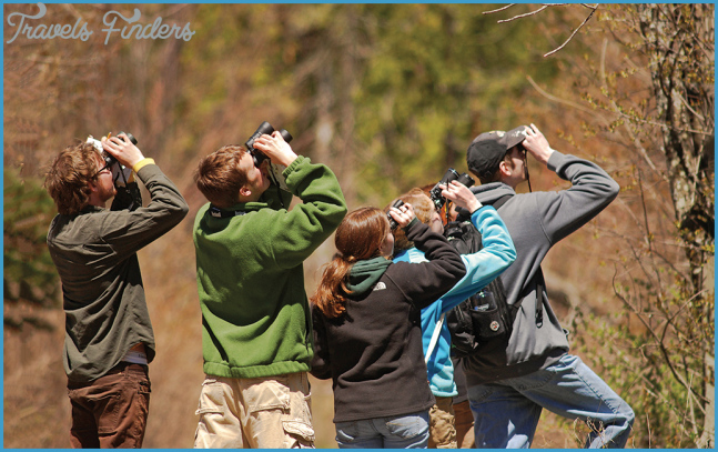 Young Birders - Michigan Audubon