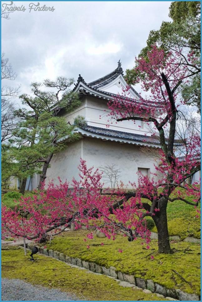Nijo Castle in Kyoto_4.jpg