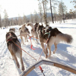 travel to lapland where is lapland lapland map5